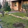 Arreglar jardín