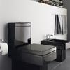 baño con sanitarios en negro