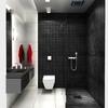 Baño en negro y blanco con ducha