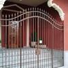 5 balconadas en hierro forjado segun medidas facilitadas