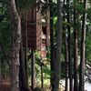 moderna casa de árbol
