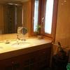 Encimera del baño de placa de mármol única