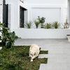 Entrada y jardín