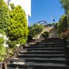 escalera al jardín