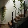 Ejecutar escaleras exteriores y revestimiento de terraza y muro