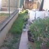 Estado previo de la jardinera