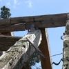 estructura primitiva 8