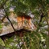 cabaña en un árbol