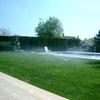 Sustitución de césped plantar nuevo y revisar sistema de riego