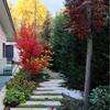 Mantenimiento de jardin en vivienda unifamiliar