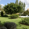 Jardín privado zona marbella