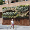 Jardín vertical en Alcobendas
