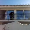 JOSE EXIMENO PLANTA ALTA 2