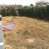 limpieza de terreno