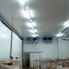 Foto: Limpieza y mantenimientos industriales