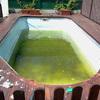 Limpieza y rejuntado de piscina
