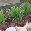 mantillo en un jardín