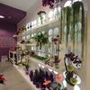 Petit Violet Floristas 10