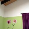 Foto: Pintar-casa-pintores-palma-mallorca-h2