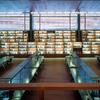 Proyecto Biblioteca