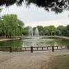 Proyecto de obra de parque