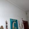 Reformar planta baja 100m aprox paredes y pintura