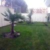 Limpiar Zonas Jardín En Comunidad