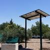 Riego solar directo de olivos