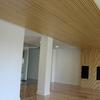 Salon, techo de madera con mueble parquet