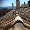 Reparar tejado roto por caida de una rama de un pino