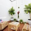 Amueblar Terraza Interna A Patio De Manzana