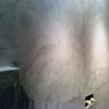 textura del microcemento en la pared