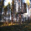 treehote Mirror Tree House