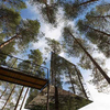 treehotel Mirror Tree House