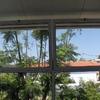 Limpieza de 10 ventanas de doble ventanal