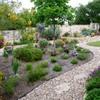 un jardín según la xerojardinería