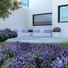 Cojines muebles de jardin