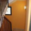 Pintar puertas garaje zona común