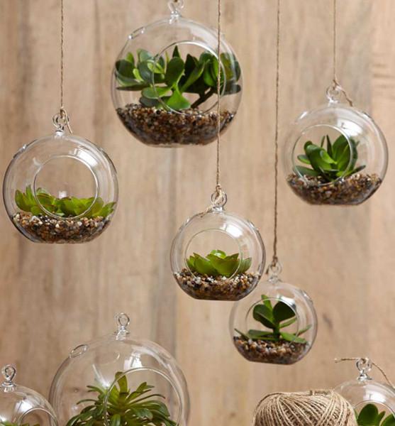 Decora con plantas dentro de casa ideas jardineros for Decoracion con plantas para jardin