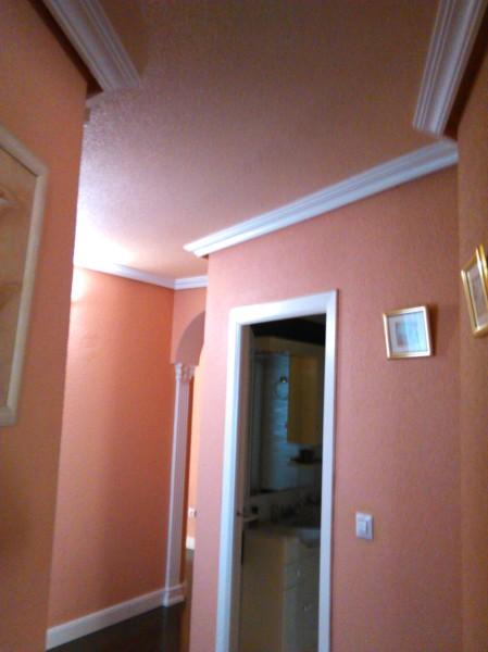Precio del m2 de pintura en vivienda habitissimo for Precio por metro cuadrado de pintura