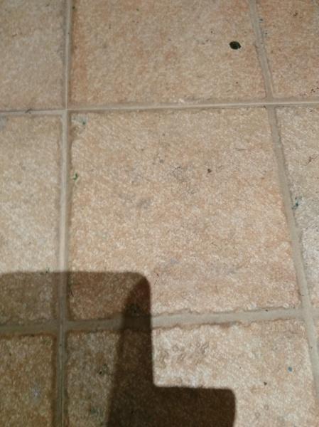 C mo cambiar un suelo demasiado poroso habitissimo - Suelos de ceramica rusticos ...