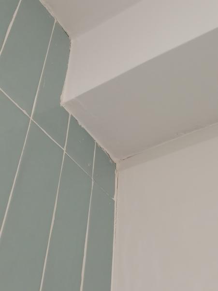 ¿Qué hacer si donde delimita el techo de pladur y azulejos está rajado?