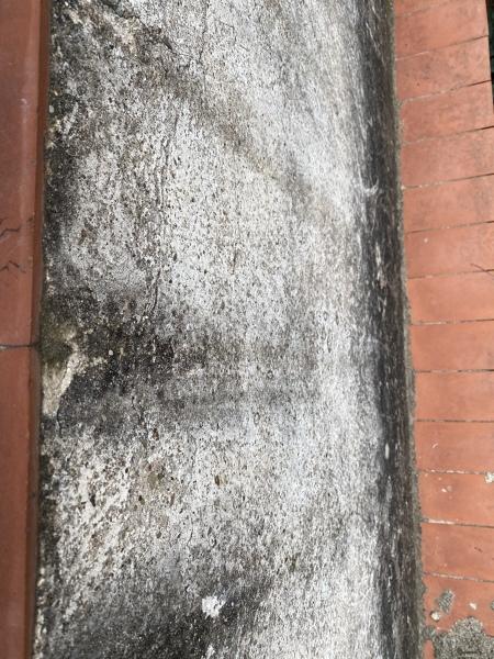 ¿Cuánto costaría pintar el exterior de mi ventana con pintura antihumedad?