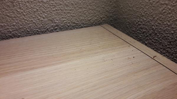 ¿Por qué cae este polvillo del techo?