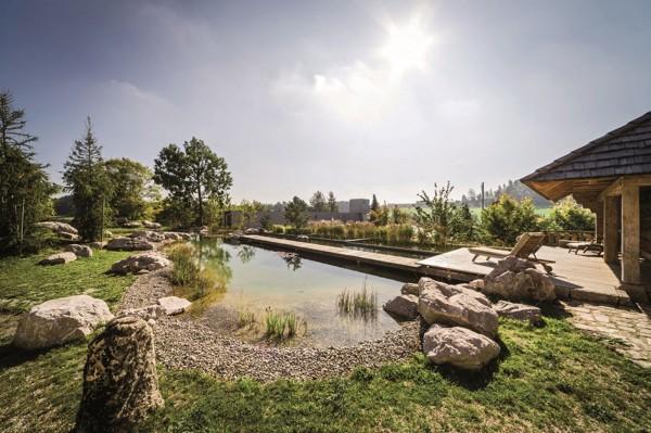 Piscina de obra o piscina natural habitissimo for Precio para construir una piscina