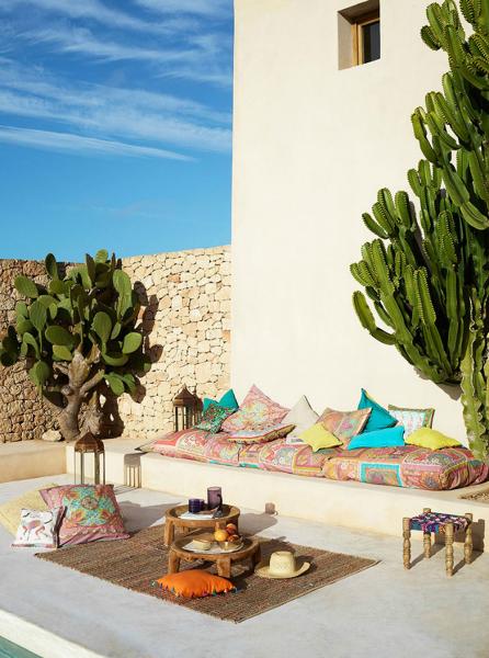 ¿Dónde puedo comprar esos cactus grandes?