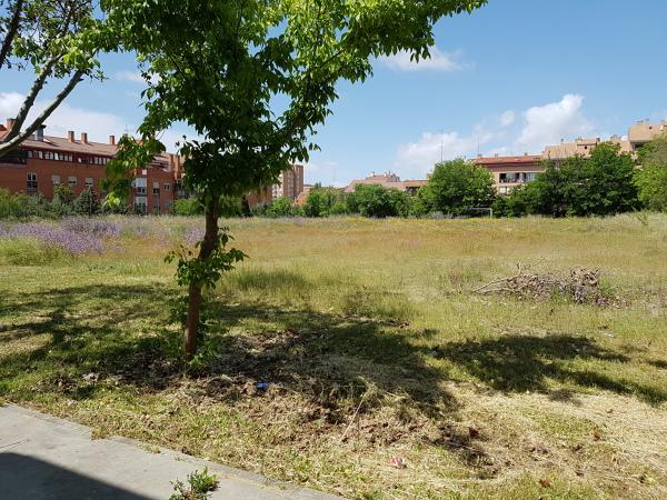 ¿Cuál o valor aproximado para a creación de un campo de hierba artificial?
