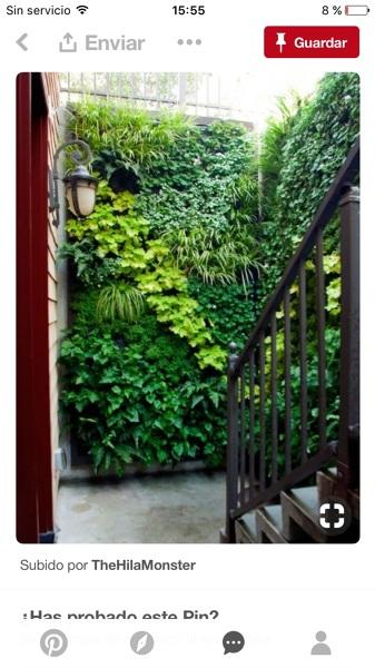 ¿Qué opináis de los beneficios de tener un jardín vertical en tu casa ya sea exterior o interior?