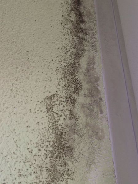 Tan caro es eliminar la humedad por condensaci n - Eliminar humedad por condensacion ...