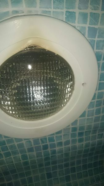 ¿Cuánto me costaría cambiar embellecedor de foco de piscina sobre liner?